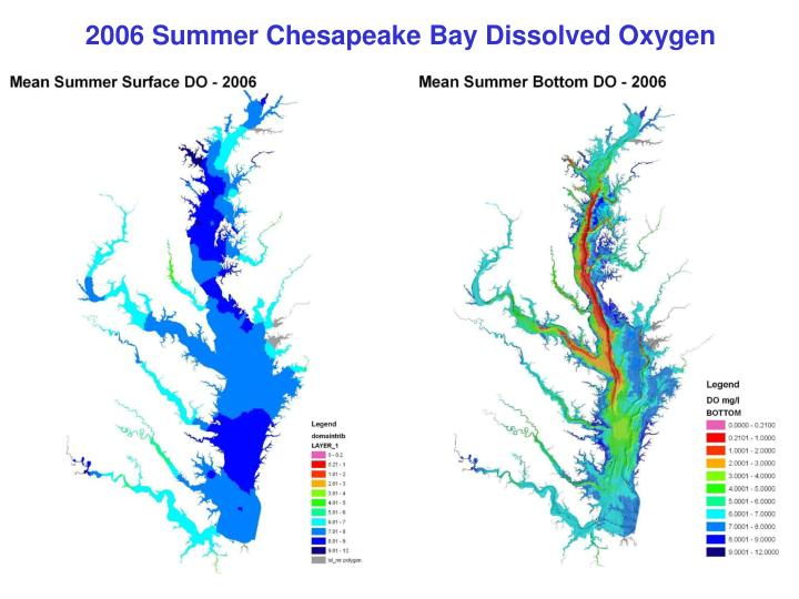 2006 Summer Chesapeake Bay Dissolved Oxygen