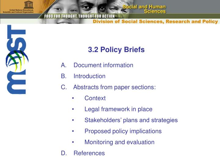 3.2 Policy Briefs