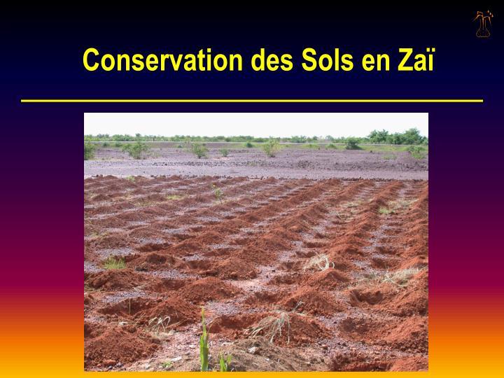 Conservation des Sols en Zaï