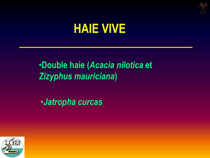 HAIE VIVE