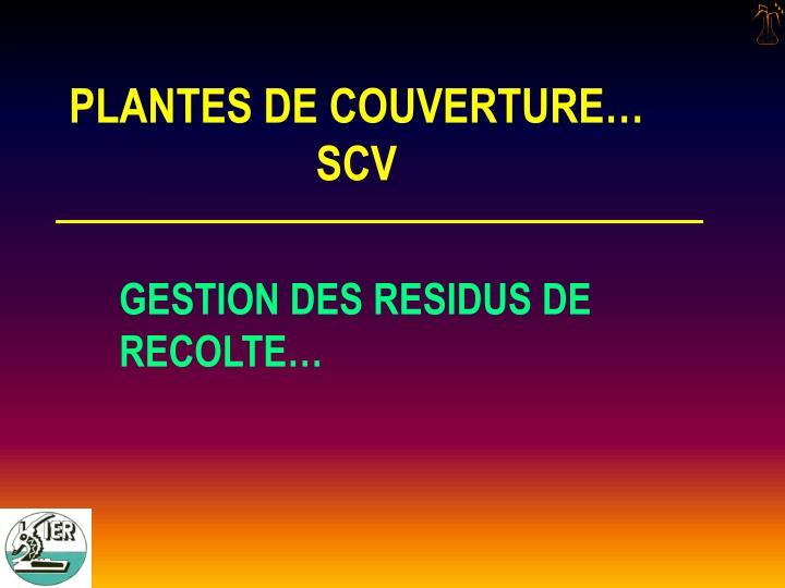 PLANTES DE COUVERTURE…
