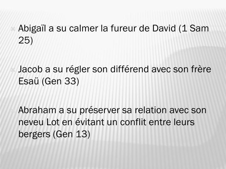 Abigaïl a su calmer la fureur de David (1 Sam 25)