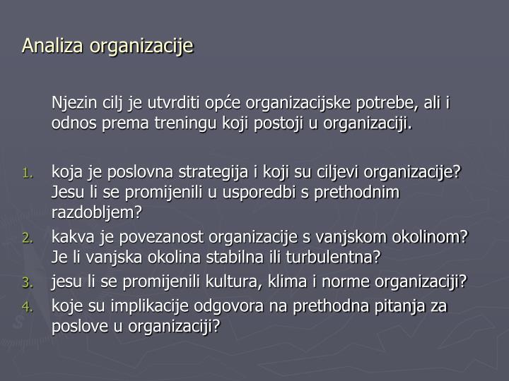 Analiza organizacije