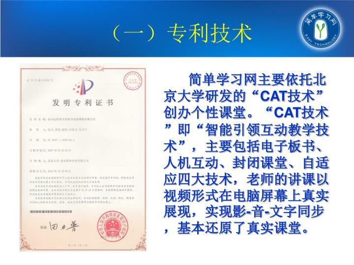 (一)专利技术