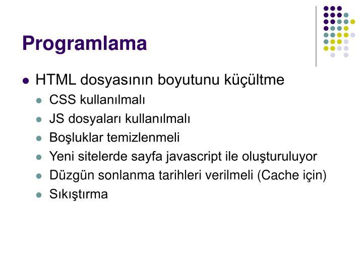 Programlama
