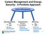 carbon management and energy security a portfolio approach