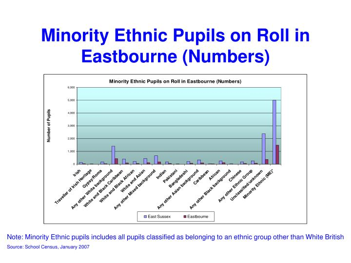 Minority Ethnic Pupils on Roll in Eastbourne (Numbers)