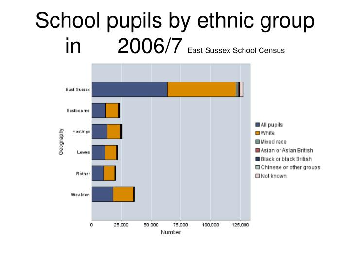 School pupils by ethnic group in      2006/7