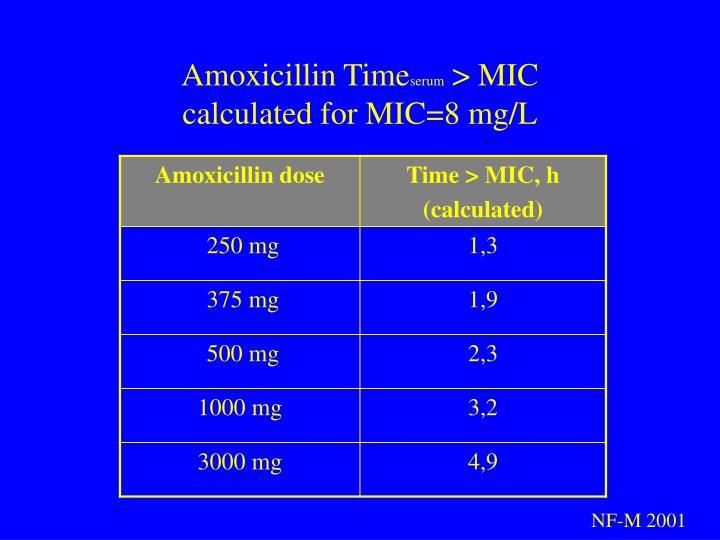 Amoxicillin Time