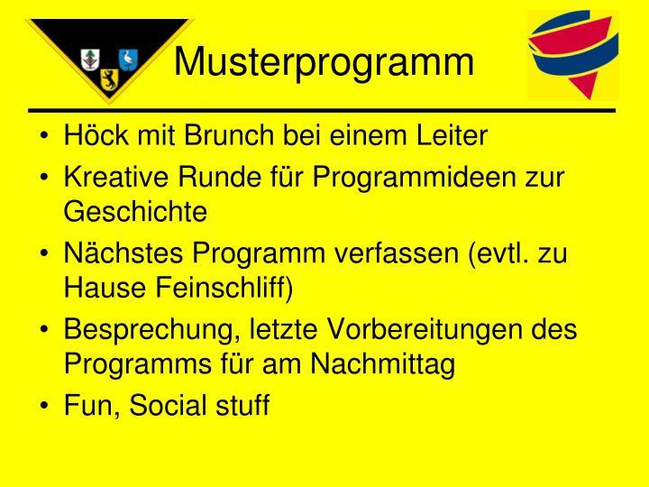 Musterprogramm