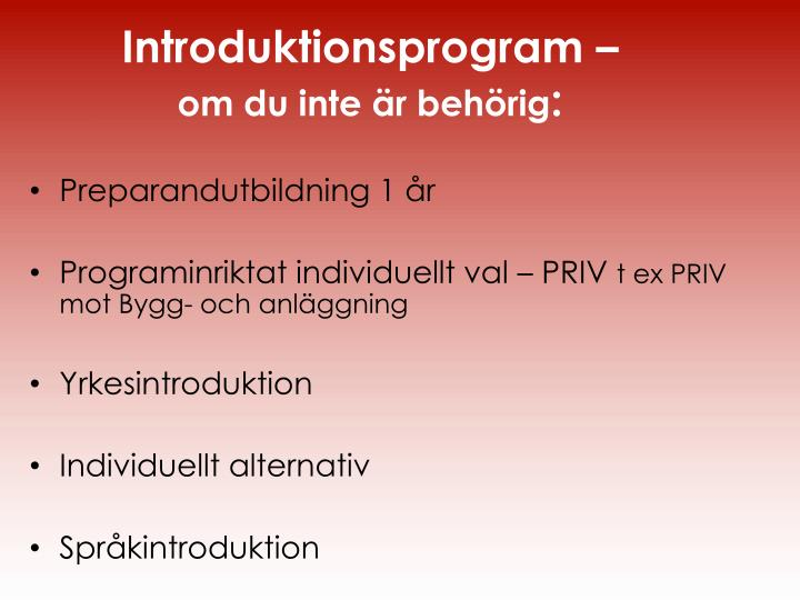 Introduktionsprogram –