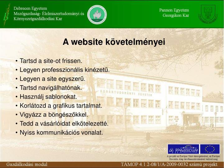 A website követelményei