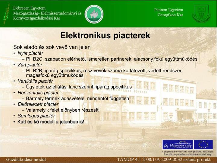 Elektronikus piacterek