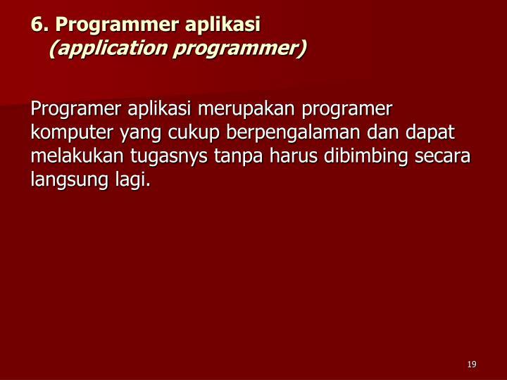 6. Programmer