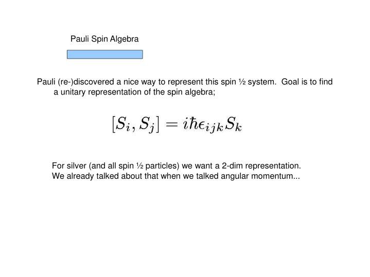 Pauli Spin Algebra