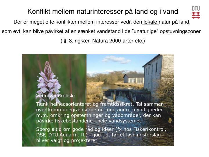 Konflikt mellem naturinteresser på land og i vand