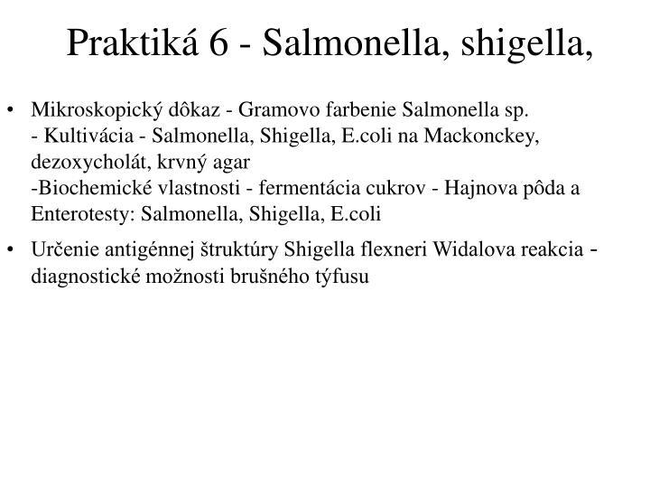 Praktiká 6 - Salmonella, shigella,