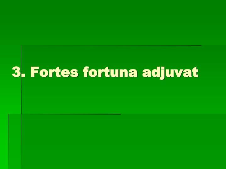 3. Fortes