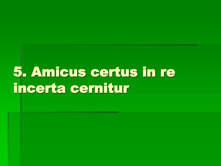 5. Amicus