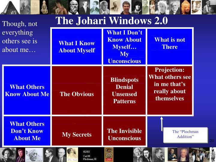 The Johari Windows 2.0