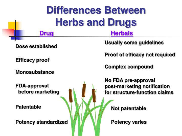 Differences between herbs and drugs
