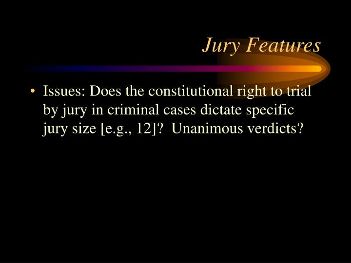 Jury Features