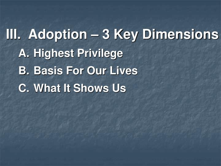 Adoption – 3 Key Dimensions