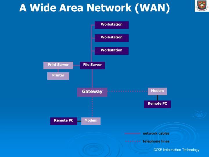A Wide Area Network (WAN)
