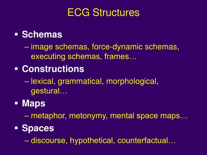 ECG Structures