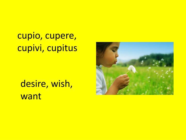 cupio