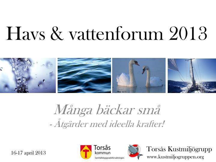 Havs & vattenforum 2013