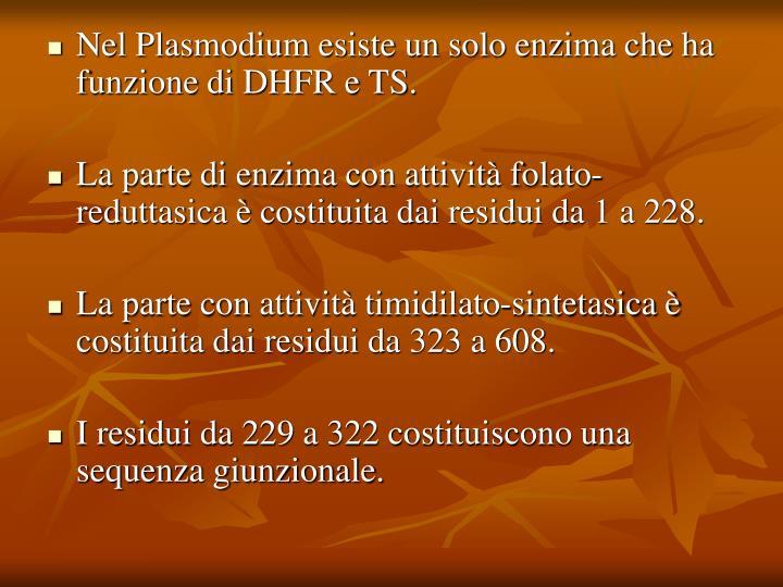 Nel Plasmodium esiste un solo enzima che ha funzione di DHFR e TS.