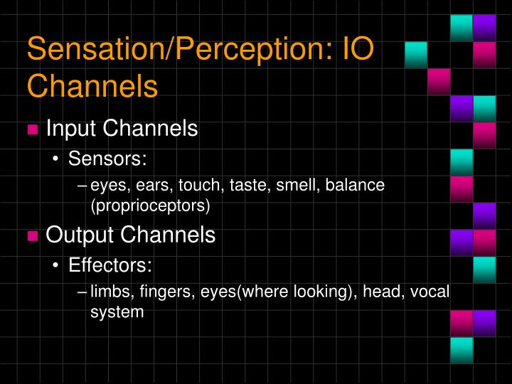 Sensation/Perception: IO Channels
