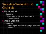 sensation perception io channels