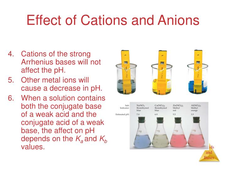Effect of Cations and Anions