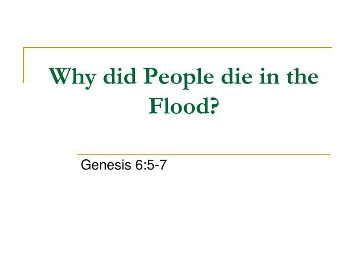 Why did People die in the Flood?