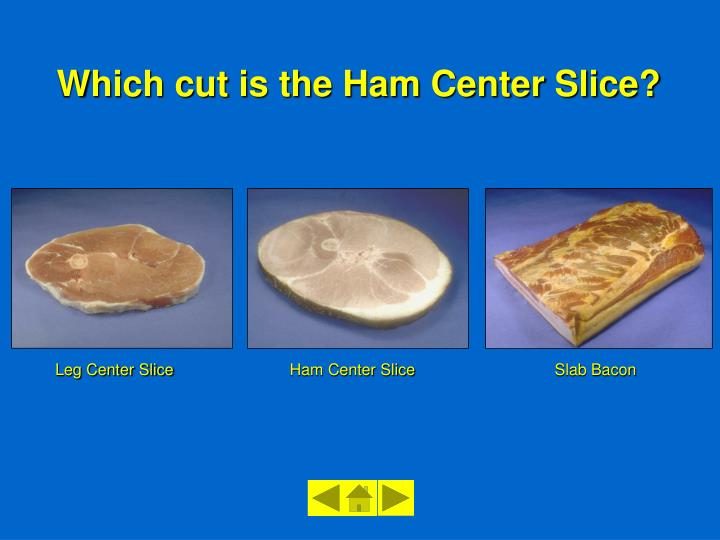 Leg Center Slice