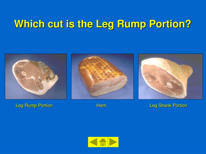 Leg Rump Portion
