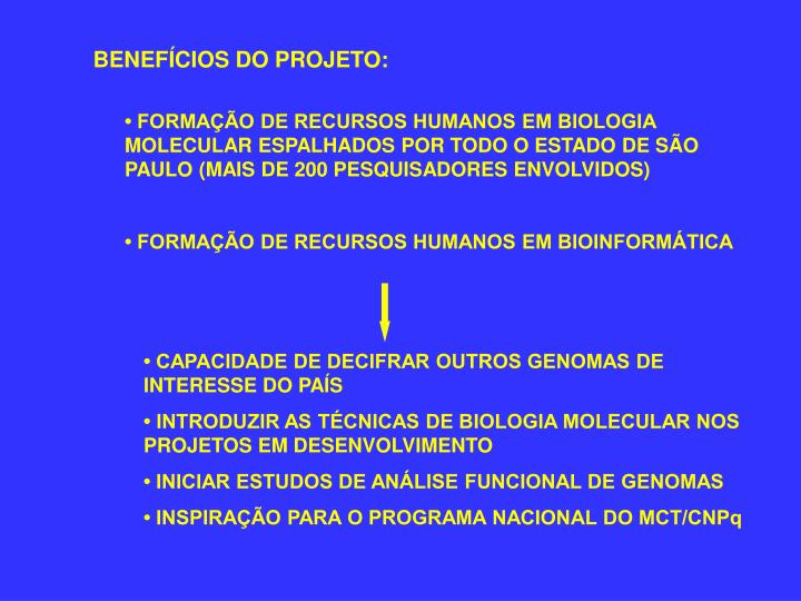 BENEFÍCIOS DO PROJETO: