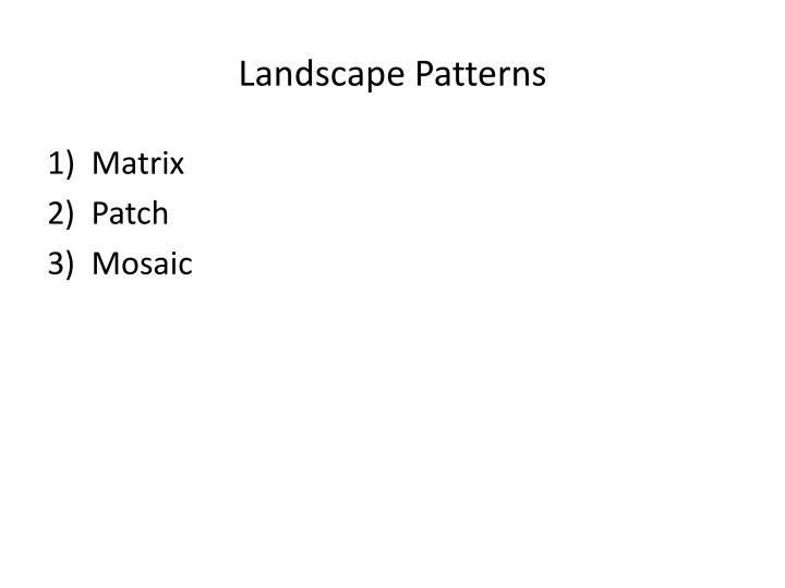 Landscape Patterns