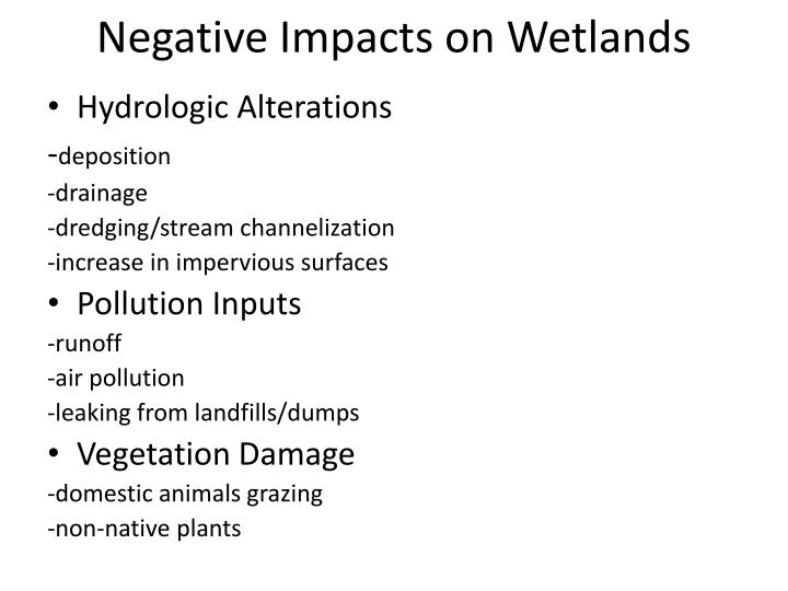 Negative Impacts on Wetlands