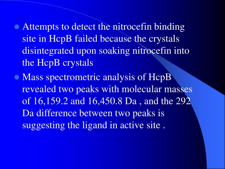 Attempts to detect the nitrocefin binding site in HcpB failed because the crystals disintegrated upon soaking nitrocefin into the HcpB crystals