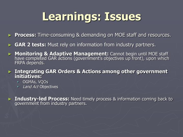 Learnings: Issues