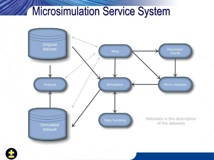 Microsimulation Service System