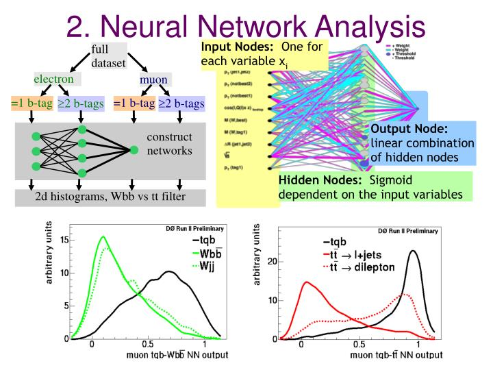 2. Neural Network Analysis