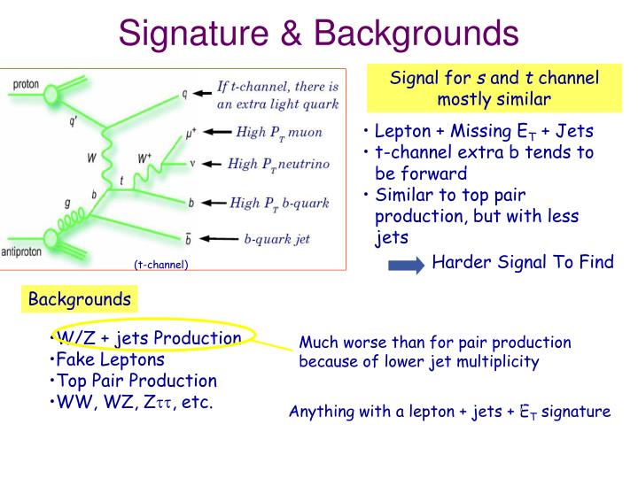 Signature & Backgrounds