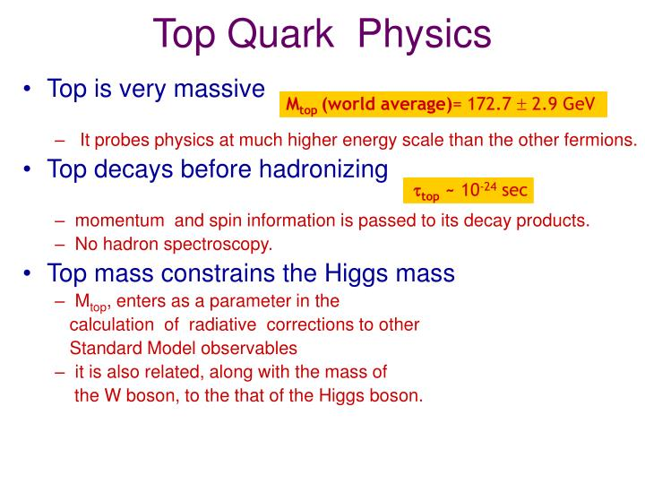 Top quark physics