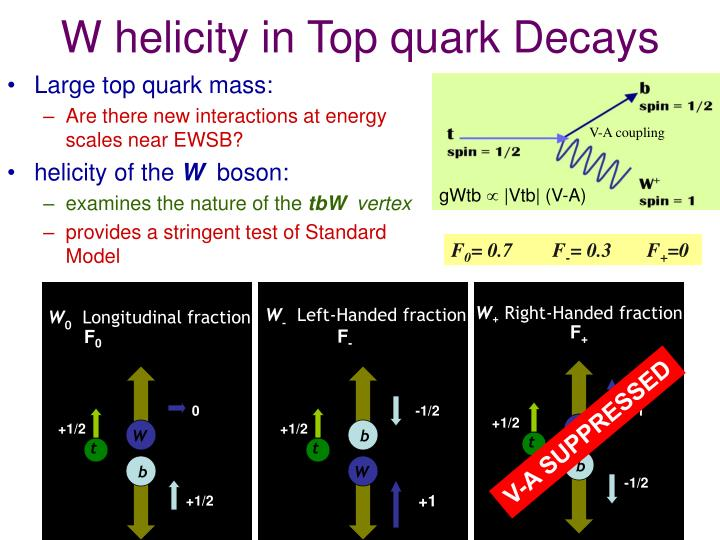 W helicity in Top quark Decays