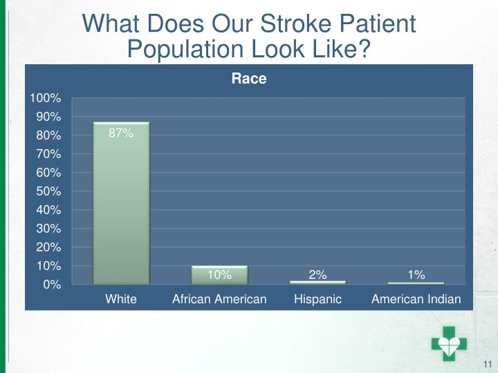 What Does Our Stroke Patient Population Look Like?