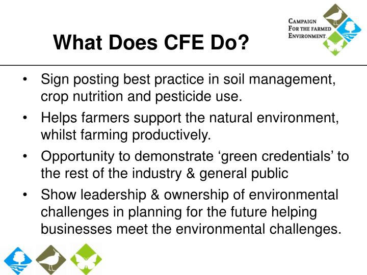 What Does CFE Do?